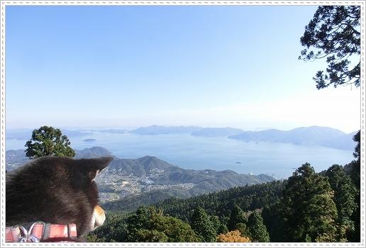 11.11.26 野呂山登山 076