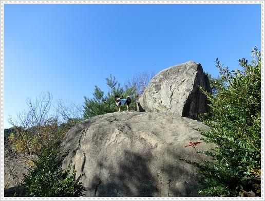11.11.26 野呂山登山 100
