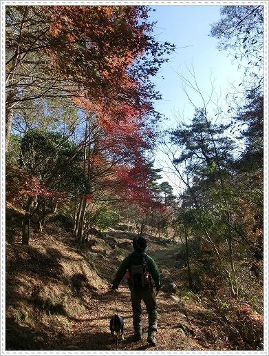 11.11.26 野呂山登山 112