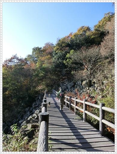 11.11.26 野呂山登山 117