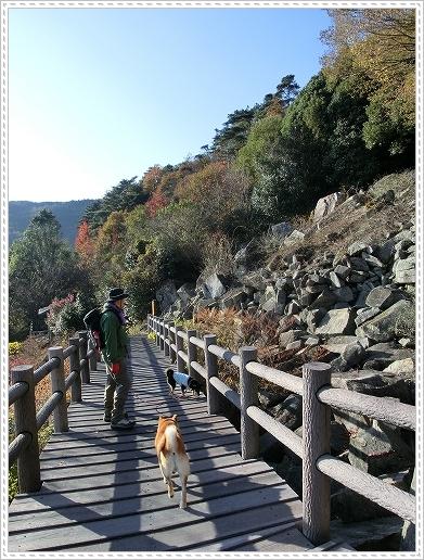 11.11.26 野呂山登山 125