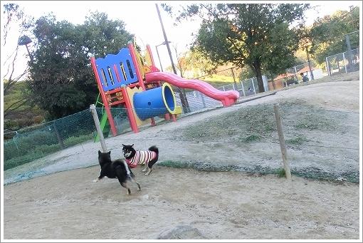 11.12.17 竜王公園ドッグラン 014