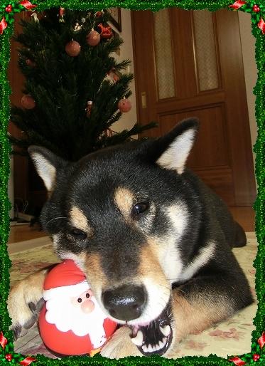 11.12.23 クリスマス 010