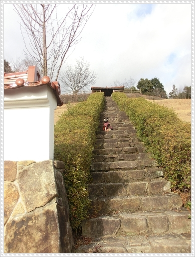 12.01.22 龍王山登山 007