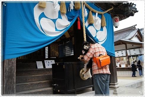 12.02.05 高尾神社 004