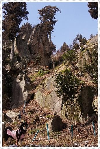 12.02.18 野呂山 13