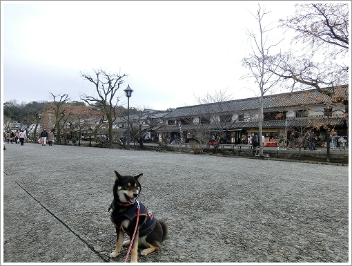 12.03.17 倉敷・岡山 027