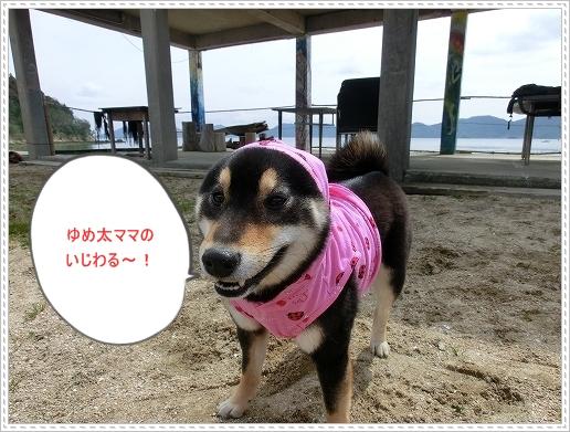 12.03.19 波輝カフェ 010