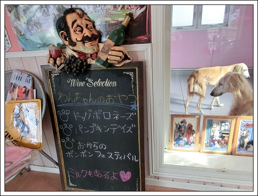 12.03.20 梅の花とドッグカフェPAW 018