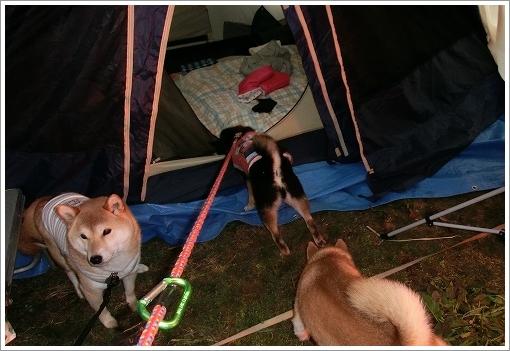 12.03.25 せら香遊ランド キャンプ 006