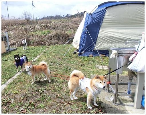 12.03.26 せら香遊ランド キャンプ 023