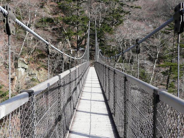 回顧の吊橋8