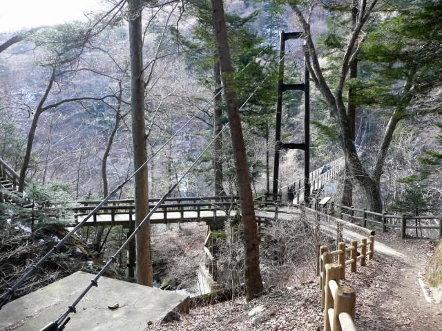 回顧の吊橋10