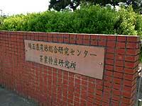 埼玉県農林総合研究センター茶業特産研究所