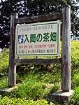 入間市茶業公園