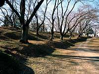 雉岡城の一番南端