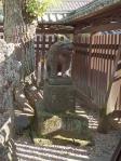 文化八年(1811) 造立の狛犬