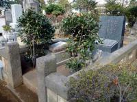 サトウハチロー墓