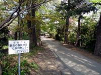 興禅院参道