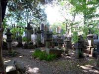 冨田家の墓