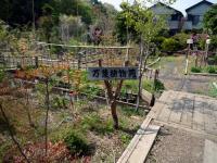万葉植物苑