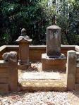 栄松院、法養院の墓