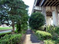 高架下側道
