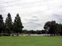 芝生広場と池