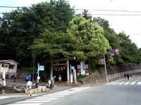八幡神社社叢