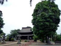 古木と地蔵堂