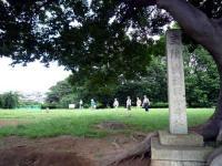 史蹟武蔵国分寺跡碑