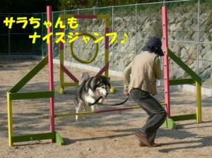 サラちゃんもナイスジャンプ