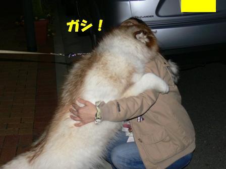 抱き合ってる
