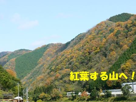 紅葉の山へ