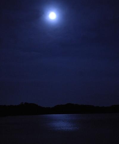 2009年大晦日 松島の風景