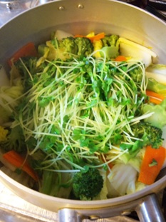 蒸し野菜鍋