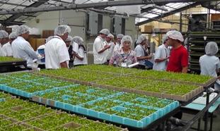 2010農高生