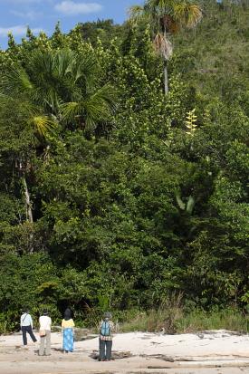 canaima-Venezuela_2010-11-30_64503.jpg