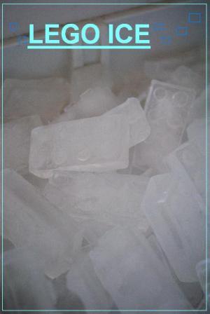 DSC_0223_convert_20100806104048.jpg