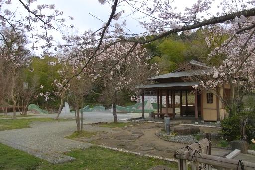 整備された公園