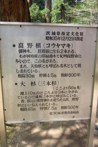 県の天然記念物の案内