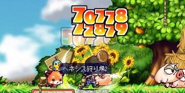 Maple100506_222840.jpg