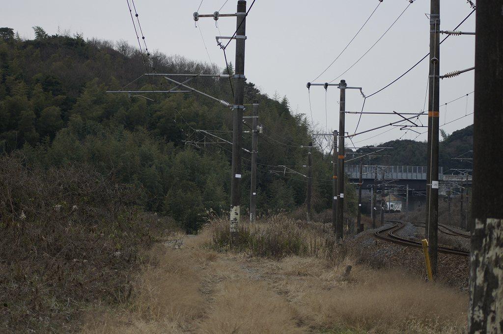 2010-01-10 4