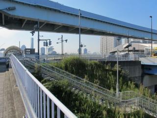 都道484号線・新交通ゆりかもめと交差すると国際展示場駅。手前の草地の下をトンネルが通る。