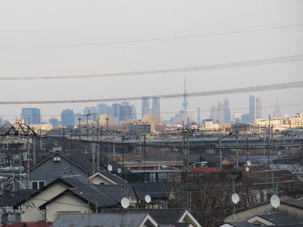 南多摩駅の川崎方からは新宿副都心の高層ビル群や東京スカイツリーが見えた。