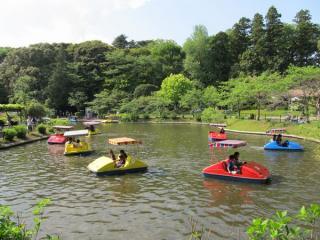 第1公園にあるボート池