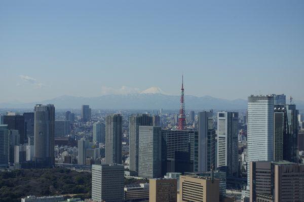 高層ビルに囲まれて建つ現在の東京タワー。2008年2月14日、聖路加ガーデン展望室(現在は閉鎖)より。