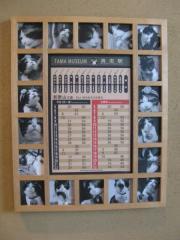 枠に「たま」の写真がはめ込まれた時刻表