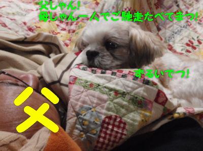 PC130940.jpg