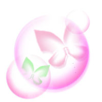 clipart-white-butterfly-pink.jpg